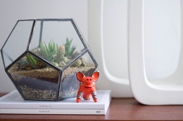 terrarium hexagon container