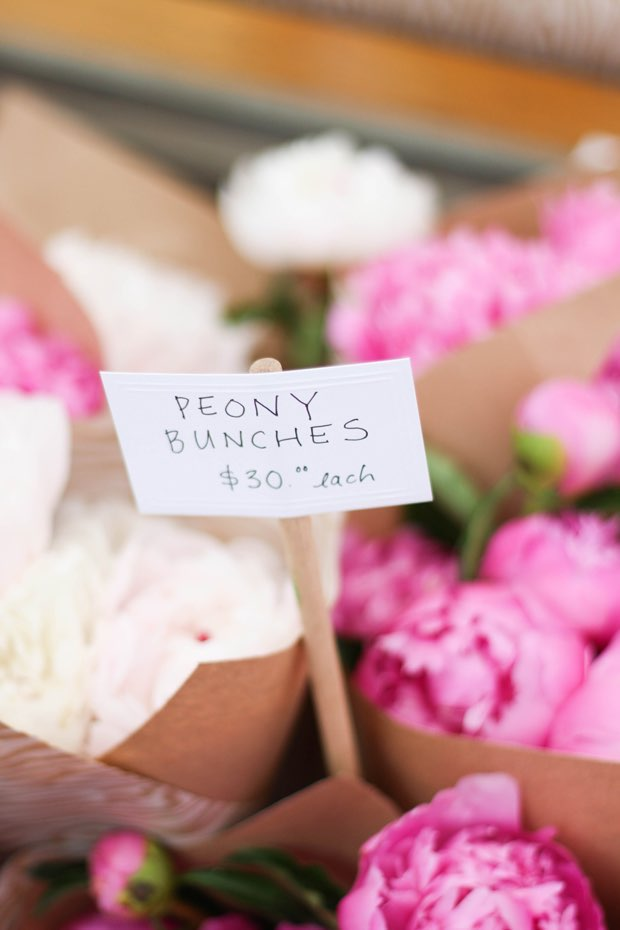 the-best-place-to-buy-peonies-in-toronto