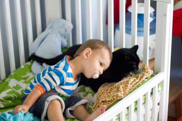 Transitioning My Baby to a Toddler Bed | BluebirdKisses